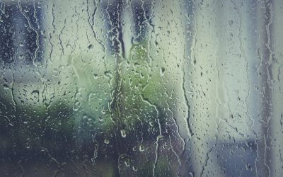 Dealing With Damp and Condensation in Your Property