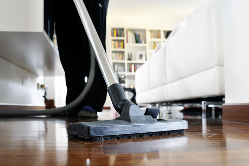 How to Ensure your Student House stays Clean and Pest Free