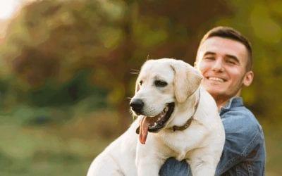 Pet-friendly rental property