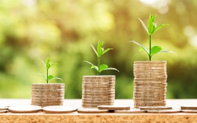 Capital Growth vs Rental Yield – Do You Know the Difference?